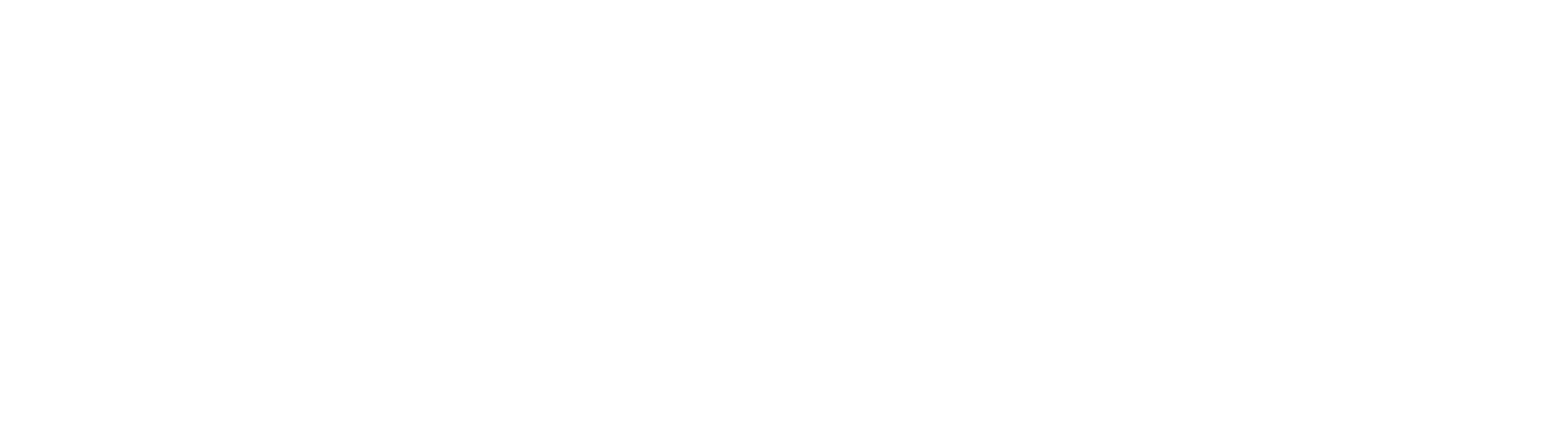 Alva_Brand_Logo_01_white